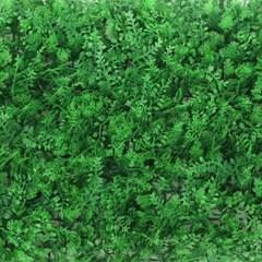 숲인테리어 야생초 벽장식 인조잔디 잔디벽(60x40cm)