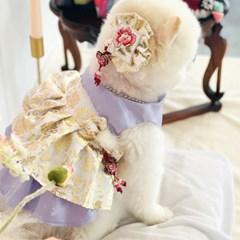 강아지 한복 - 포도색매화 겨울 퓨전한복