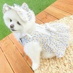 봄의멜로디 원피스(옐로우) 강아지 봄 원피스