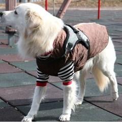 강아지 대형견 겨울 산책 깔깔이 바람 막이 점퍼 5XL