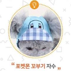 포켓몬스터x다솜 꼬부기 홈즈 모자