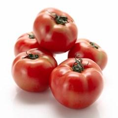 자연담움 완숙 찰토마토 5kg (3번)