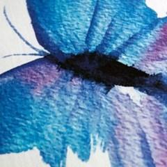나비효과-블루