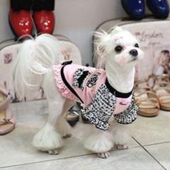 강아지 드레스 원피스 외출복 특이한강아지옷 애견