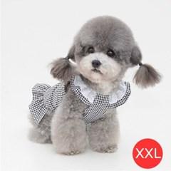 체크 레이스 강아지 원피스 블랙 XXL