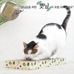 그린 아보카도 고양이 사각 스크래쳐_(764517)