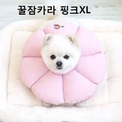 고양이케이프 위생가이드 강아지 애견카라핑크XL