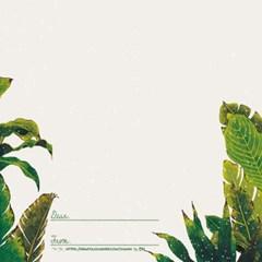 초록의 소리 일러스트 엽서