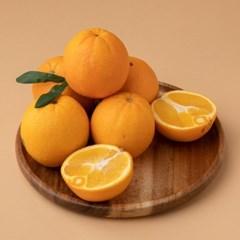 리릿 퓨어스펙 블랙라벨 오렌지 3kg 중과