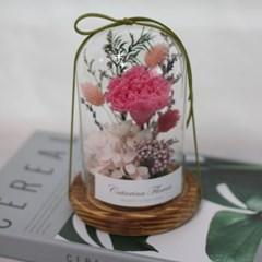 프리저브드 유리돔 카네이션꽃(진핑크)