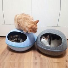 테비 에그하우스 고양이 숨숨하우스 고양이휴식처