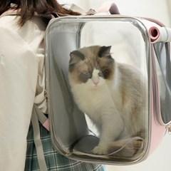 접이식 고양이 강아지 이동장 하우스 백팩가방