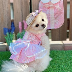 벚꽃 소녀 원피스 - 핑크