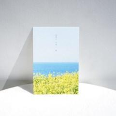 [메리필름] 봄꽃 감성 글귀 엽서 2종(유채꽃/벚꽃)