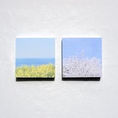 [메리필름] 봄꽃 감성 다꾸 패키지(떡메, 스티커, 엽서)