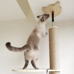 에코펫위드 고양이 캣타워 캣폴 270cm/B-02