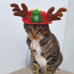 도그웨그 루돌프 모자 강아지 고양이 크리스마스 코스튬