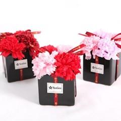 [선물케이스+용돈봉투]어버이날 카네이션 비누꽃 화분