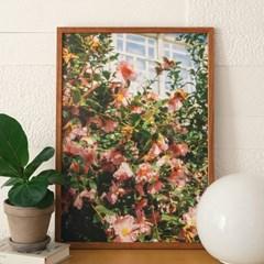 [크롭크롭] Camellia Poster #1 (A2)