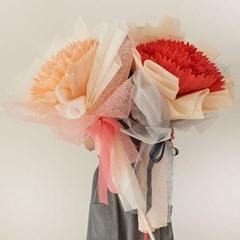 자이언트 카네이션 한송이 꽃다발