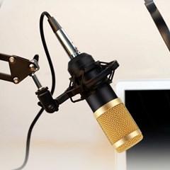 단일 지향성 개인 방송용 악기 노래 녹음용 콘덴서 마이크