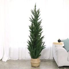 인조나무 조화화분 인조목 주니프러스 향나무 180cm_(2496040)