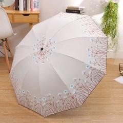비오라 꽃무늬 양우산_(2557054)