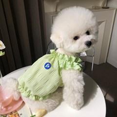 [펫츠랜드] 벨라레이스 나시티 강아지옷 애견의류 강아지나시티