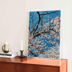 꽃 피는 자두나무 (5070 size) - Jitten 인테리어 포스터