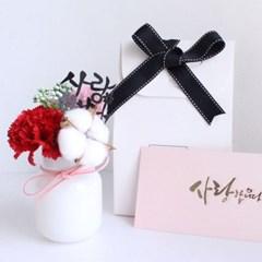뿜뿜 화병 카네이션 선물 세트+용돈 봉투 어버이날