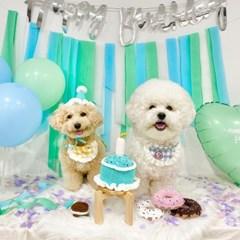 개달당 강아지 고양이 생일모자 강아지생일파티 고깔모자