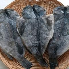 반건조 우럭 2미 (28cm/230g 내외) 생선구이