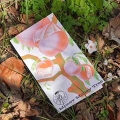 어버이날 보타닉 디자인 용돈 편지 카드 오렌지핑크