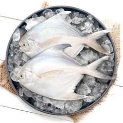 국내산 반건조 병어 생선 2미(25cm250g 내외)
