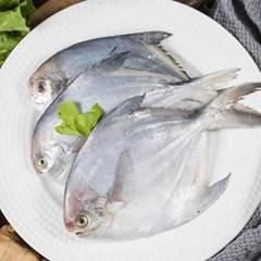국내산 반건조 병어 생선 3미(25cm250g 내외)