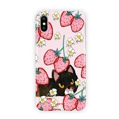 딸기밭 속 고양이