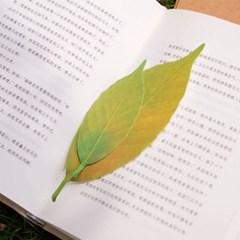 나뭇잎 온도에 따라 색이 바뀌는 변색 선물 온도계