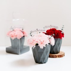 어버이날 선물, 카네이션 비누꽃 플라워 화분