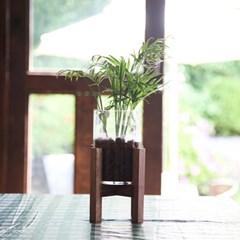 테이블야자 우드다리 수경재배 세트