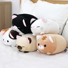 모찌모찌 만두 고양이 인형 25CM 5종 모음_(1579722)