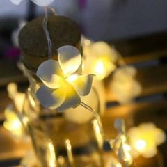 플라워 가랜드 조명 플루메리아 꽃조명