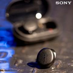 소니 WF-XB700 EXTRA BASS 블루투스 이어폰 / 블랙