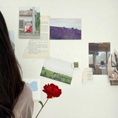 두소녀를 기다린 빨간 꽃송이 (엽서 6장)