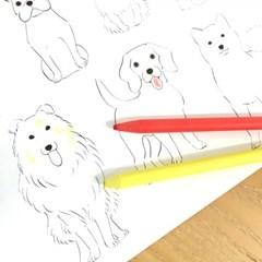 개고양이 컬러링북