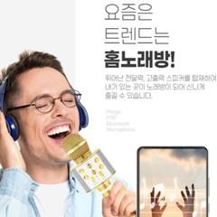 휴대용 카 노래방 무선 홈 블루투스 마이크