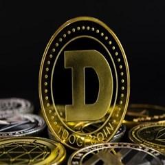 도지코인 데코 기념장식주화 가상암호화폐 Doge coin