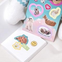 [쏘슬러시] 콜라주 스티커 - Cute animals