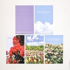 [메리필름] 감성 명언을 담은 글귀 미니 엽서 - 빈티지 로즈