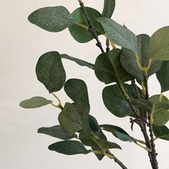 달러잎 나무가지 조화