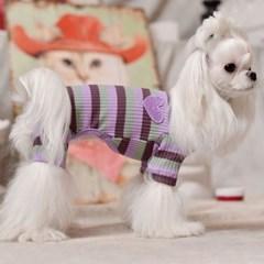 강아지 티셔츠 골지올인원 레인보우 강아지옷
